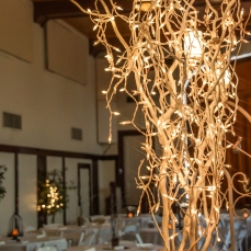 Winter Wedding - Lighting Accent