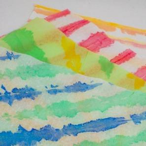 TissuePainting440